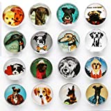 Pack-16 Cute Dog Refrigerator Magnets, Pretty Glass Fridge Magnets for Office...