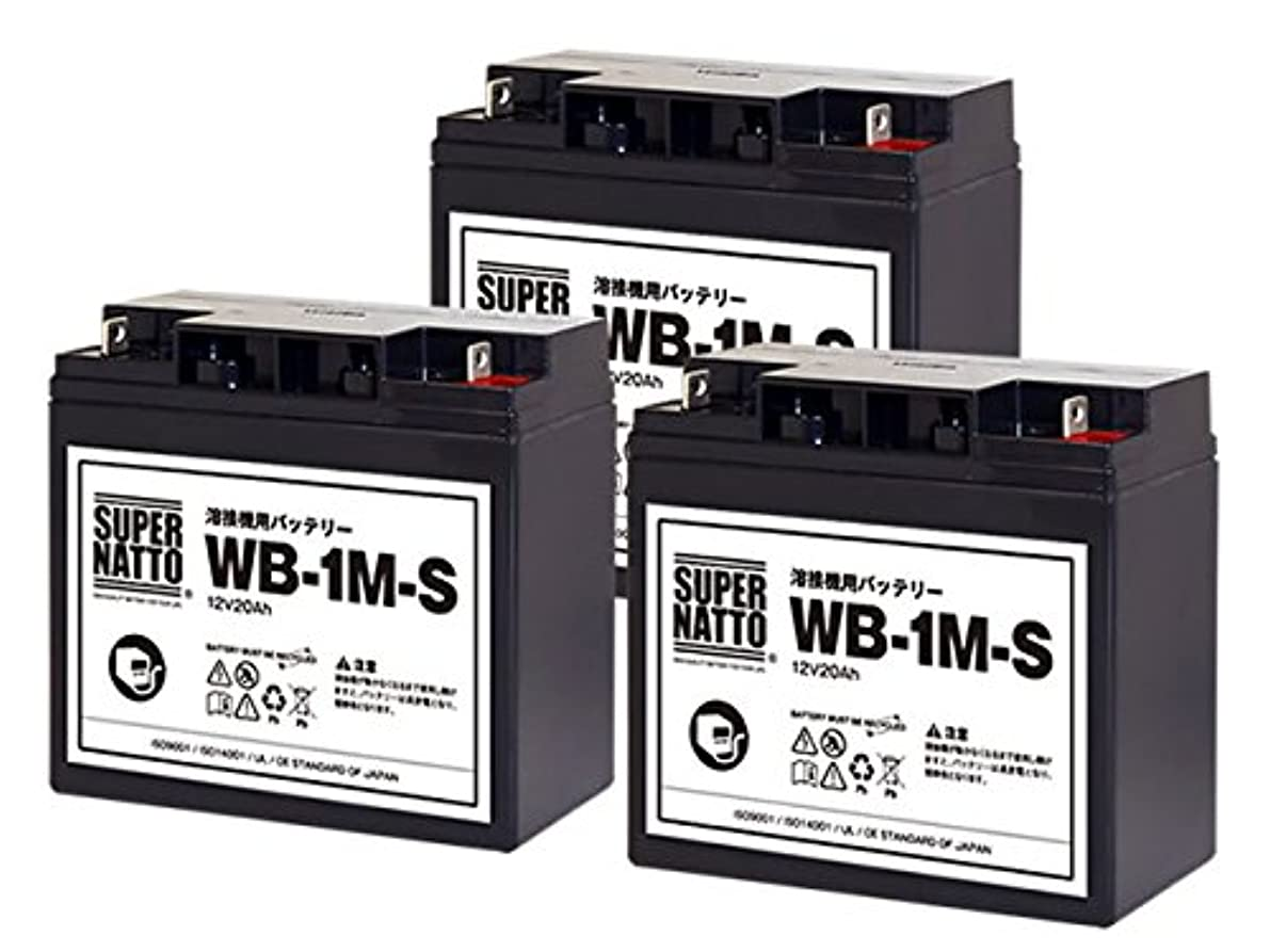 方法論機知に富んだ落胆したスーパーナット 溶接機用バッテリー WB-1M-S 3個セット■WB-1M互換■マイト工業 ネオライト140 MBW-140-1 ネオライトⅡ140 MBW-140-2用