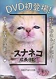 砂漠の天使スナネコ成長日記 (DVD)