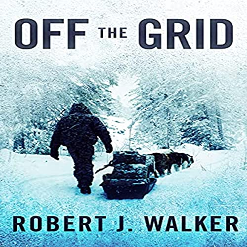 Off the Grid: EMP Survival in a Powerless World