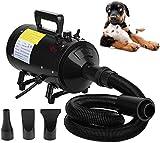 Gato del Perro Velocidad 2800W Secador de Pelo Secador de Pelo preparación del Animal doméstico de Temperatura Ajustable con Manguera Flexible de 2,5 M y 3 boquillas LMMS (Color : Black)