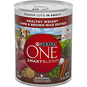 Purina ONE Weight Management, Natural Wet Dog Food, SmartBlend Healthy Weight Tender Cuts Lamb & Brown Rice – (12) 13 oz. Cans