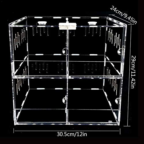 KiGoing Acryl Terrarium Fütterungsbox für Reptilien - Reptilienzuchtbox Transportsbox mit Schiebedeckel, Geeignet für Spinnen, Skorpione, Frösche, Käfer