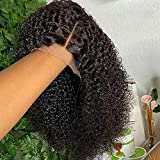 13x4 Afro Kinky Curly Lace Front Wigs Human Hair 20 Inch Curly Human Hair Wig For Black Women Pre Plucked With Baby Hair Black Lace Frontal Wig