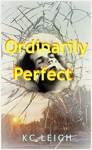 Ordinarily Perfect: A car accident, a brain injury... will anything be ordinary again?