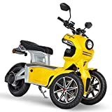 Doohan iTank eGo2 Elektroroller 1560W - 45km/h E-Scooter Elektro-Trike 2 Personen E-Roller 3-Rad Elektromobil EU-Zulassung Gelb
