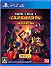 Minecraft Dungeons Hero Edition PS4版