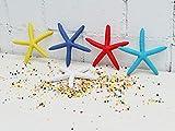 Takestop® - Estrella marina falsa - Juego de 2 estrellas de resina de 13 cm - Ideal para decorar el acuario - Colores aleatorios