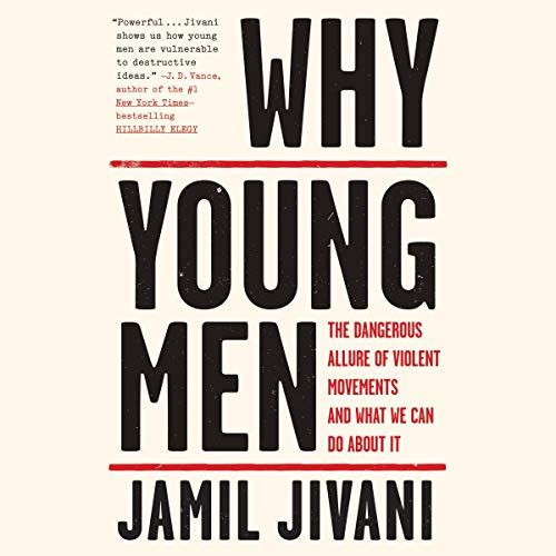 Why Young Men audiobook cover art