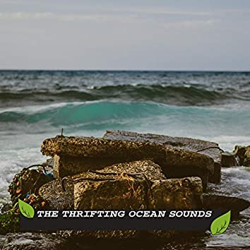 The Thrifting Ocean Sounds