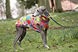 DOG AND HOME BEAUTIFUL JUMPER IN MANY SIZES (M)