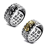 ZEINZE 2Pcs Adjustable Feng Shui Pi Xiu Ring, Attract Fortune Luck Gambling Wealth Protection Buddhist Mantra Charm Amulet Talisman, Party Birthday for Men Women