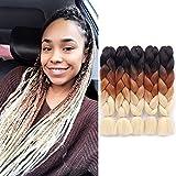 Jiayi 24' 5pcs/Pack 100g/pc Afro Synthetic Jumbo Braids Ombre Kanekalon Fiber Hair Extension for Braiding Hairstyles (Black/Brown/613)