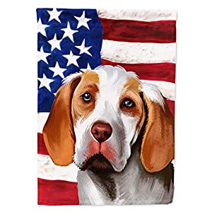 Caroline's Treasures CK6406CHF Ariege Pointer Dog American Flag Flag Canvas House Size, Large, Multicolor 2