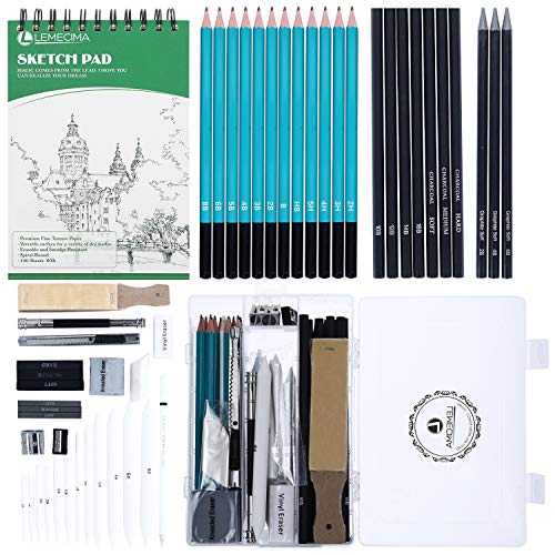 Lapices de Dibujo Artistico 50 Piezas Set de Dibujo Profesional con Bosquejo...