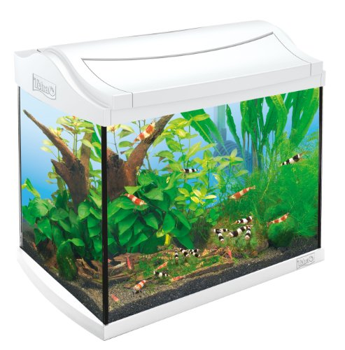 Tetra 211957 AquaArt Shrimps Aquarium-Komplett-Set 20 L, ideal für die Haltung und Zucht von Garnelen, White Edition