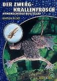*Der Zwergkrallenfrosch: Hymenochirus boettgeri (Art für Art: Terraristik)