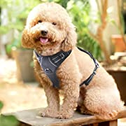 Rabbitgoo  Dog Harness No-Pull Pet Harness Adjustable Outdoor Pet Vest 3M Reflective Oxford Material Vest for Dogs Easy Control for Small Medium Large Dogs (Black, M)