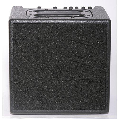 Aer Alpa amplificador profesional para guitarra electroacústica