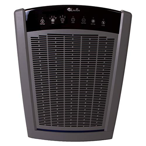 LivePure Bali Series Multi-Room Whole House Large Console Air Purifier, True HEPA Filter Captures Allergens, Smoke, Mold, Pollen, Dust Mites, Graphite