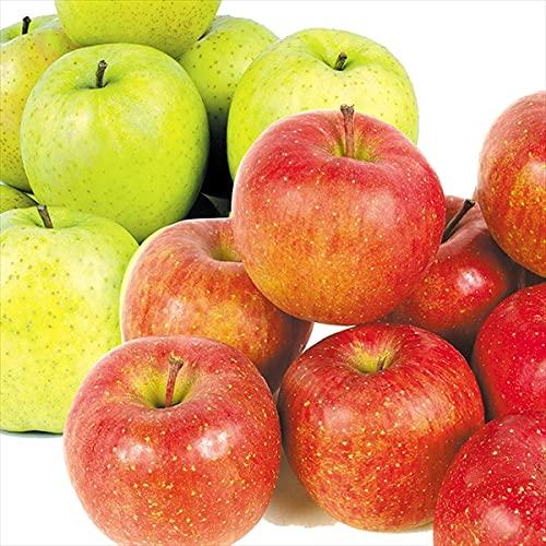 国華園 りんご 青森産 サンふじ&王林セット 2種4�s(各2kg)1組 ご家庭用 食品