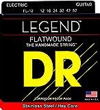 DR Strings Acoustic Guitar Strings (FL-12)