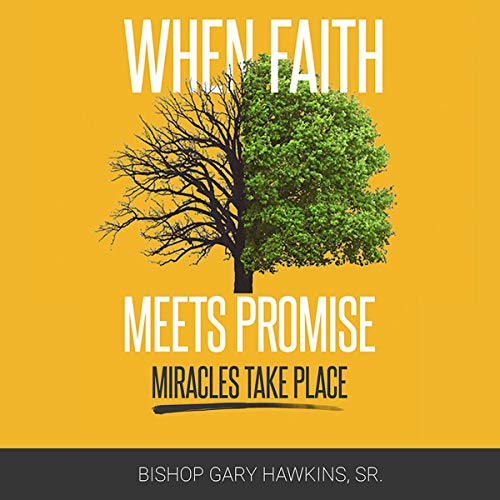 When Faith Meets Promise: Miracles Take Place audiobook cover art