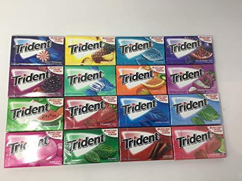 TRIDENT Sugar Free Gum Variety Assortment 16 Pack (16 Flavors)
