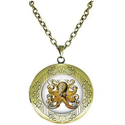 nijiahx Octopus by Ernst Haeckel –...
