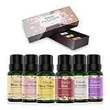 Huiles Essentielles Aromathérapie Naturelle 100% Pures 6 * 10ml, ESSLUX Huile Essentielle pour Diffuseurs