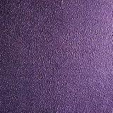 1kg (ca. 1Liter) (Grundpreis 23,90€/kg) Effektfarbe Metallic, Metallic Farbe, Wandfarbe, Wand-Farbe, Glitzer Wandfarbe, Farbe mit Glitzer, Glitzereffekt, Glitzer Effekt, Glitter (Lila Metallic)