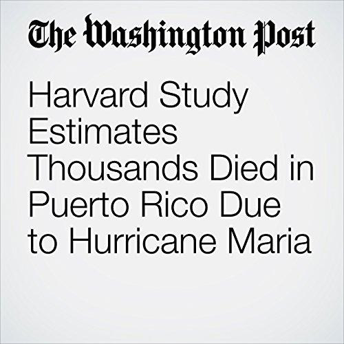 Harvard Study Estimates Thousands Died in Puerto Rico Due to Hurricane Maria copertina