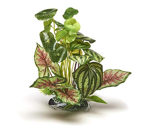 Pistacho Pet – Hermosa Planta Realista de Acuario con Base, 25 cm de Alto