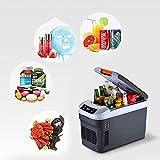 BLJ-car Congelador de refrigerador portátil del compresor de 12 litros, Solo camión del hogar del Coche de core12 V / 220 V
