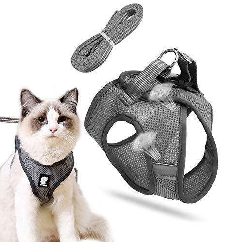 Katzenleine mit Geschirr für Katzen,Hundegeschirr,katzengeschirr mit leine,cat harness and leash,katzengeschirr kleine katze,Katzengeschirr Geschirr,Katzengeschirr und Leine Set,Outdoor Walking