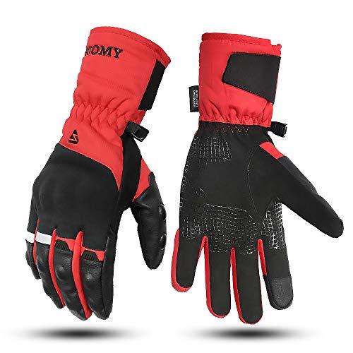 Lidauto Motorhandschoenen voor winter, lang, locomotief, wieluitrusting, waterdicht, warm, touchscreen, warm, voor mannen en vrouwen