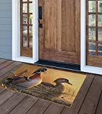 Brumlow MILLS Misty Morning Wood Ducks Autumn Area Rug for Entryway, Kitchen, Living Room or Fall Home Décor, 2'6' x 3'10', Multi-colored