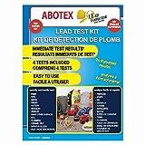 4 Piece Lead Paint Test Kit
