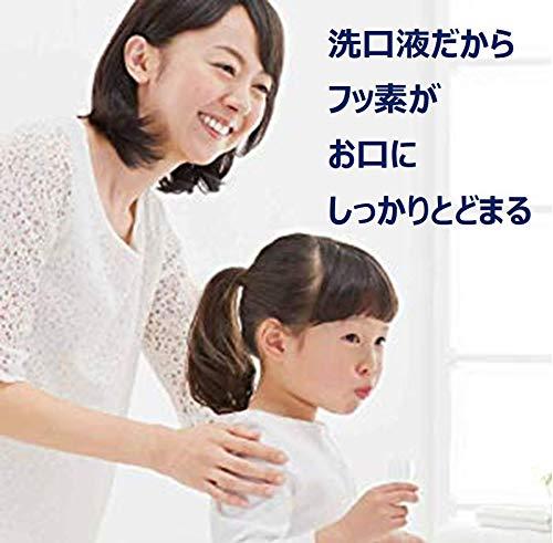 【第3類医薬品】エフコート(フルーツ香味)250mL※セルフメディケーション税制対象商品