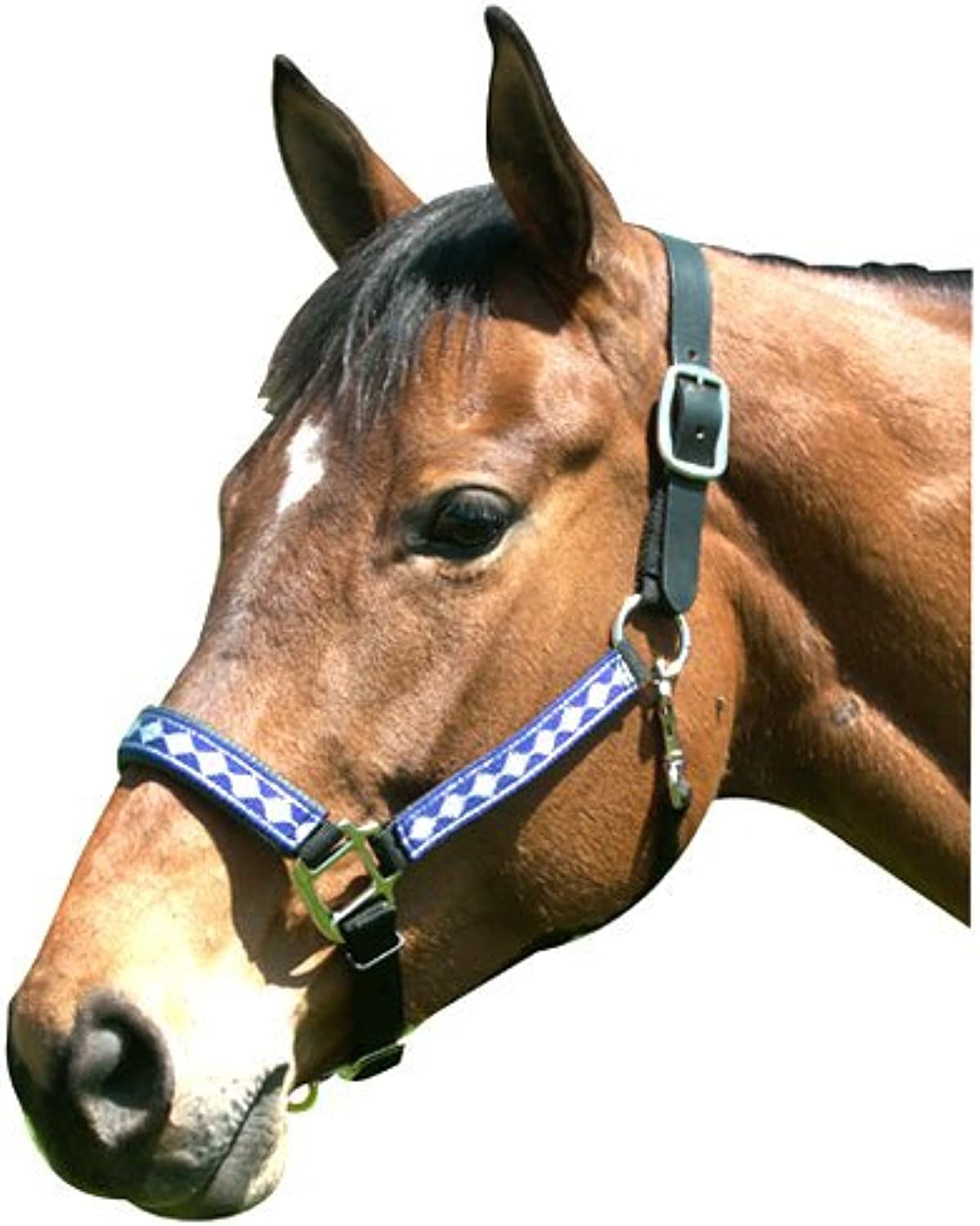 Intrepid International Leather Crown Diamond Halter con Padded Nase, Blue /Silver, Full