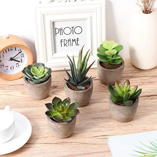 Yardwe 5 Stücke Künstliche Sukkulenten kunstpflanze mit Töpfen Tischdeko Hausgarten Deko - 5