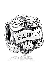 Pandora Moments Family Charm Sterling Silber 791039