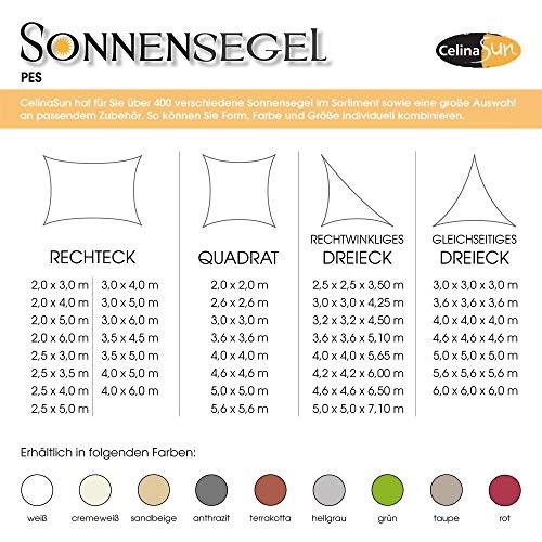 CelinaSun Sonnensegel Sonnenschutz Garten Balkon und Terrasse PES Polyester Wetterschutz wasserabweisend impr/ägniert Schattenspender 1000579 Dreieck rechtwinklig 3 x 3 x 4,25 m gr/ün