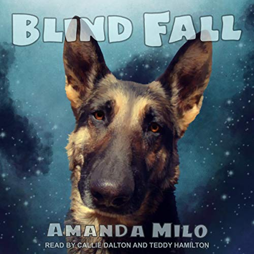 Blind Fall cover art