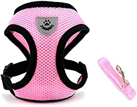 INVENHO Mesh Harness with Padded Vest for Puppy and Cats No Choke Design Ventilation Gift with Leash(Small,Pink)