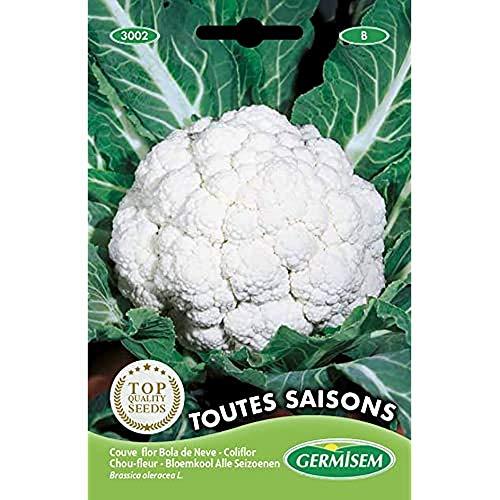 Germisem Toutes Saisons Semi di Cavolfiore 2 g