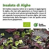 Zoom IMG-1 cibocrudo insalata di alghe in