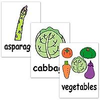 フラッシュカードえらべる英語カード【野菜】■A4サイズ ■ラミネート加工■