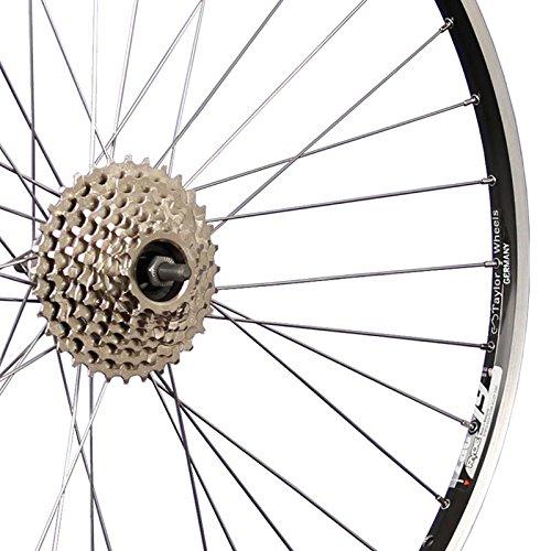 Taylor-Wheels 28 Zoll Hinterrad ZAC19 / 8 Fach Schraubkranz - schwarz - 2