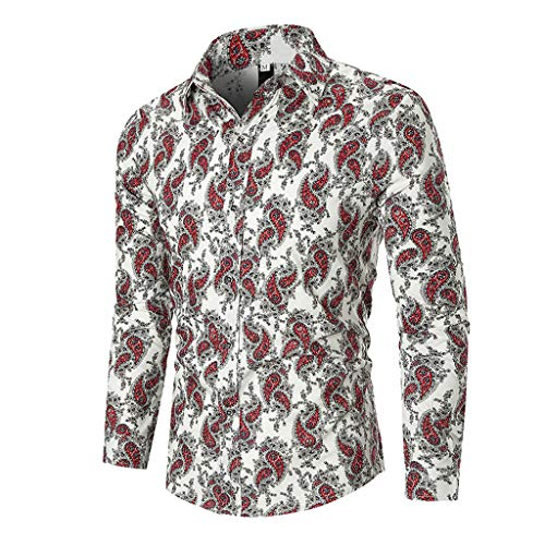 ITISME Hemd Herren Kariert Trachtenhemd Karohemd super Checked Shirt für das Oktoberfest gebürstet Baumwollehemden Langarmhemd Freizeithemd Business Party